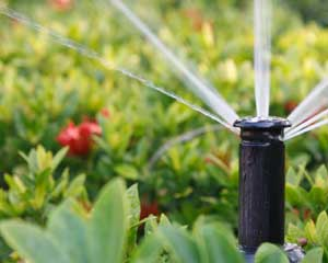 reticulation-Busselton-Dunsborough-Yallingup-South-West-margaret-river-eagle-bay